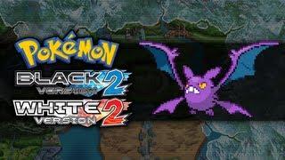 Crobat  - (Pokémon) - Pokemon Black 2 and White 2 | How To Get Crobat