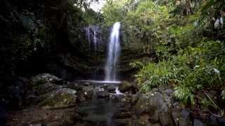 preview picture of video 'Cascada Las Delicias, Ciales, Puerto Rico'