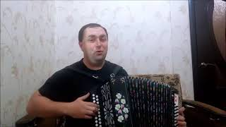 РУССКАЯ НАРОДНАЯ ПЕСНЯ БЕЛОСНЕЖНАЯ ВИШНЯ исп Владимир Шеколенко гармонь русска