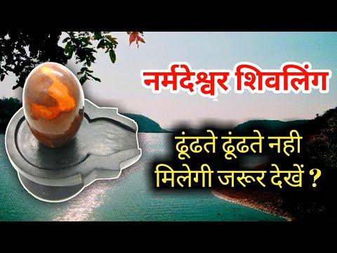 Yellow Narmadeshwar Shiva Lingam
