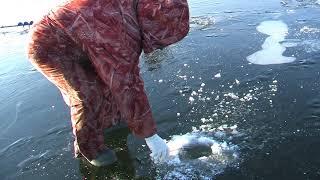 Рыбалка на пронском водохранилище рязанская область