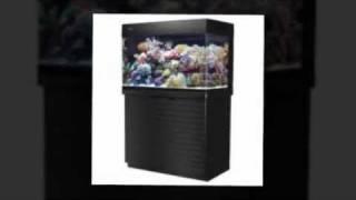 Online US Aquarium And Fish Supplies. Online Store For All Your Top Quality Aquarium Accessories