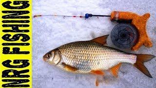 Гирлянда для рыбалки