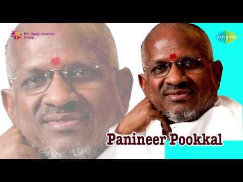 Panineer Pookkal (1981) Full Song Jukebox | Ilayaraja Melodies Hits | Malayalam Film Songs
