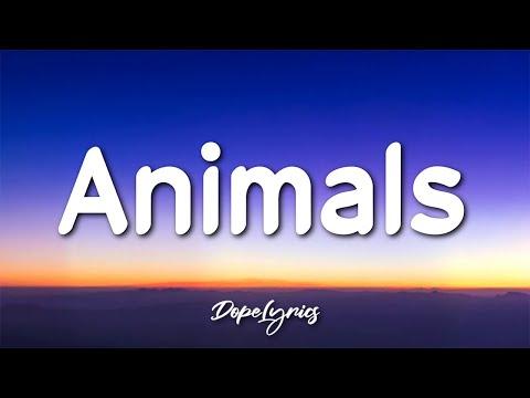 Sxint Prince - Animals (Lyrics) 🎵