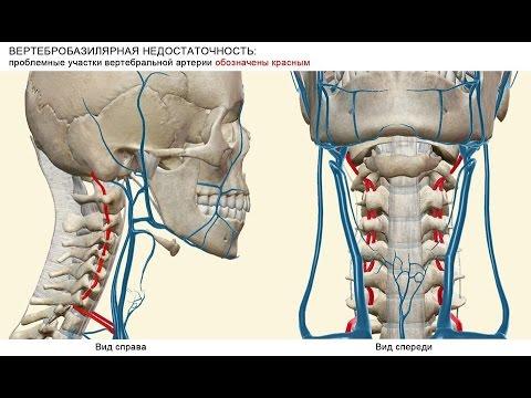 Боль в спине справа под ребрами сзади отдающая в ногу