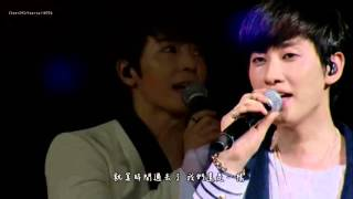 [繁中字] SuperJunior D&E - Ten year (1st JAPAN TOUR LIVE)(ft.Luna of F(x))