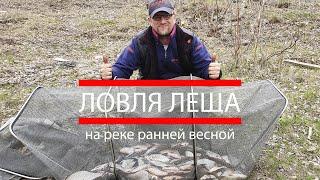 Когда ловля подлещика весной на реке