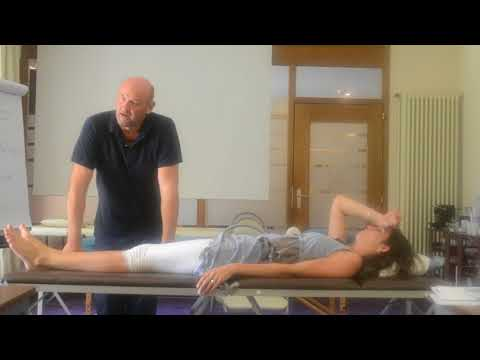 Les exercices pour le renforcement kresttsovykh des muscles