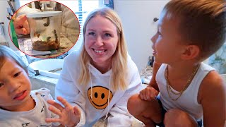 We Bought The Kids Temporary Pets!