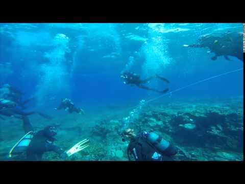 Atlantis Dive Centre Santorini
