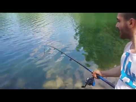 Trucchi su ubriaco del 2015 da pesca