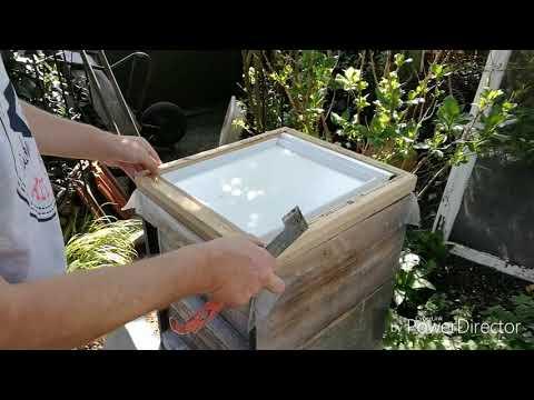 Der Ingwer mit der Zitrone und dem Honig das Rezept der Gesundheit für die Abmagerung das Rezept