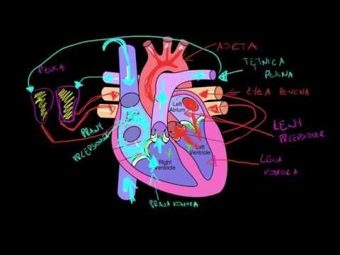 Szkoła dla zdrowia pacjentów z nadciśnieniem tętniczym, chorobą