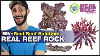 Real Reef Solutions Dry Rock: Natural looking aquascape = Amazing from day ONE!