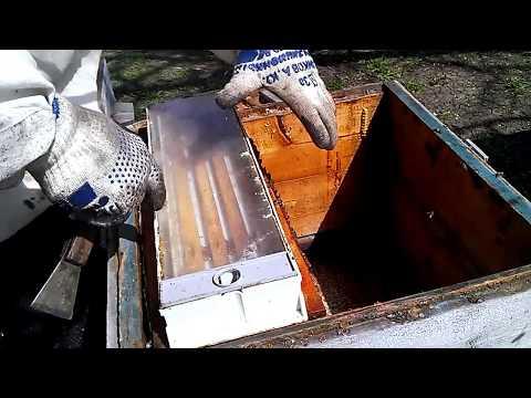 Весна - пора работ для пчеловода  (Начинающий #Пчеловoд)