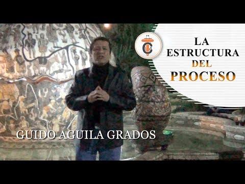LA ESTRUCTURA DEL PROCESO - Tribuna Constitucional 76 - Guido Aguila Grados