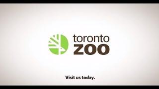 Toronto Zoo- Get Closer. Discover More.