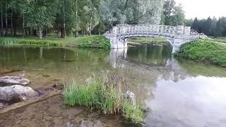 Гатчина  Анонс