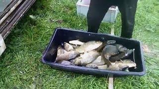Рыбалка в июне/обзор №4.