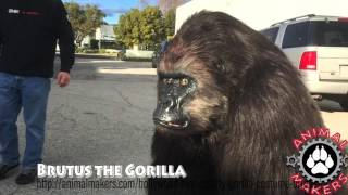 Brutus the Gorilla by Animal Makers