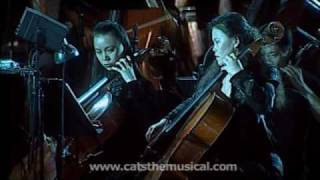Cats Music Medley