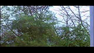 Ae Jagdamba Mayee [Full Song] Bandhan Toote Na