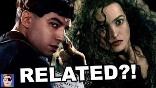 Bellatrix & Credence Are Related?! | Fantastic Beasts Theory