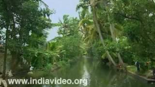 Inland Waterways of Backwaters