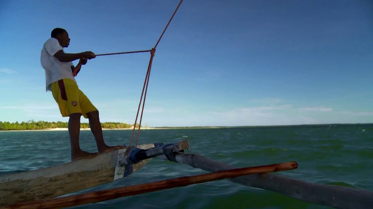 Tansania: Bootsfahrt Delfine (0:35)