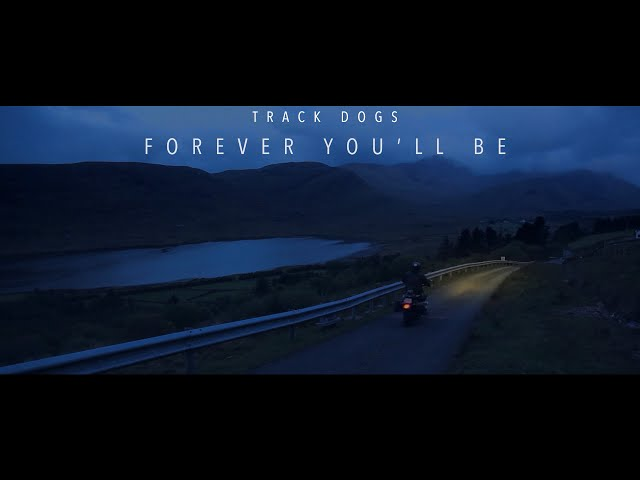 Forever You'll Be - Track Dogs