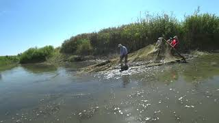 Ловля рыбы бреднем на малых реках