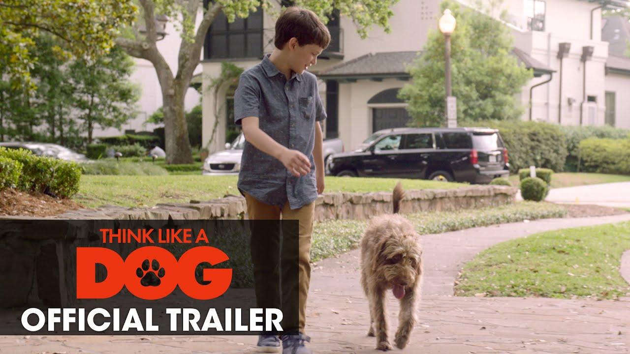 Трейлер фильма Думай как собака