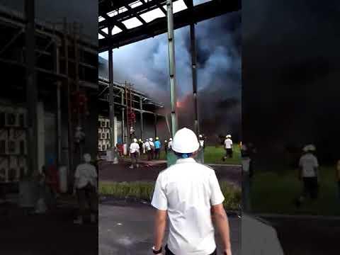 Manajemen Tak Tahu Penyebab Kebakaran Gudang Ampas PT SDS