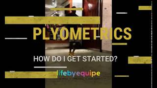Plyometrics…how do I get started?