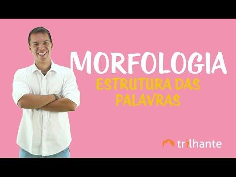 Download Morfologia: Estrutura das Palavras HD Video