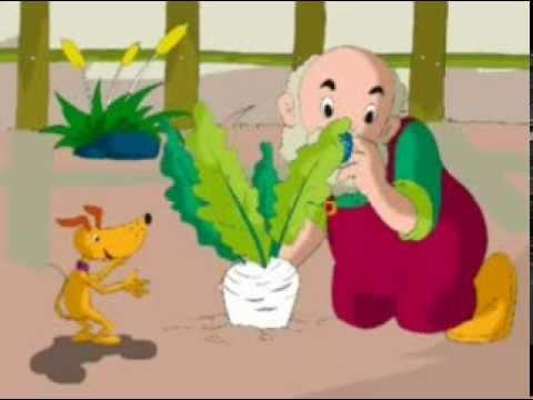 Truyện: Nhổ củ cải