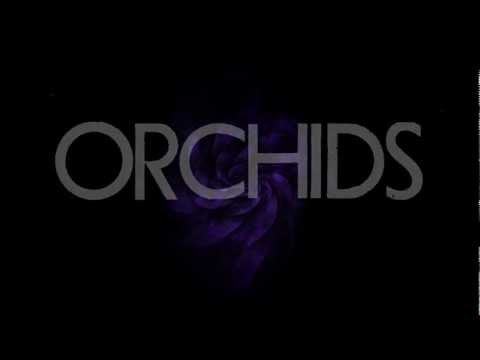 Orchids - The Long Silent Age (Official Lyric Video)