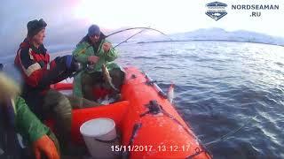 Рыбалка в ноябре на баренцевом море