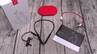 OnePlus Bullets Wireless Headphones - The Price Is Right!