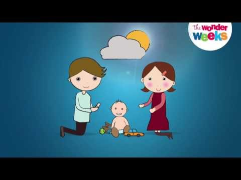 Video of Baby Wonder Weeks Milestones