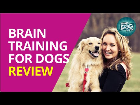 Brain Training for Dogs™ Review - Don't Buy Until You Watch This ...