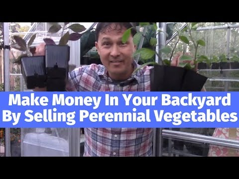 Make Money at Home By Starting a Perennial Edible Plant Nursery in Your Backyard