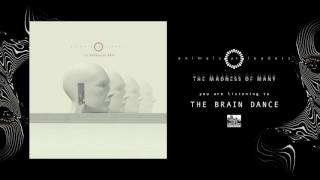 ANIMALS AS LEADERS - The Brain Dance