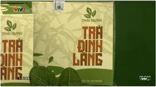 Chọn Giá Đúng với trà đinh lăng Thái Hưng