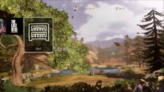 Life is Strange: Before the Storm PS4 Dynamic Theme