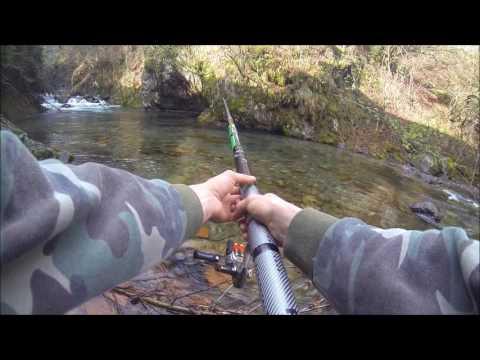 Posti sulla carta per pesca