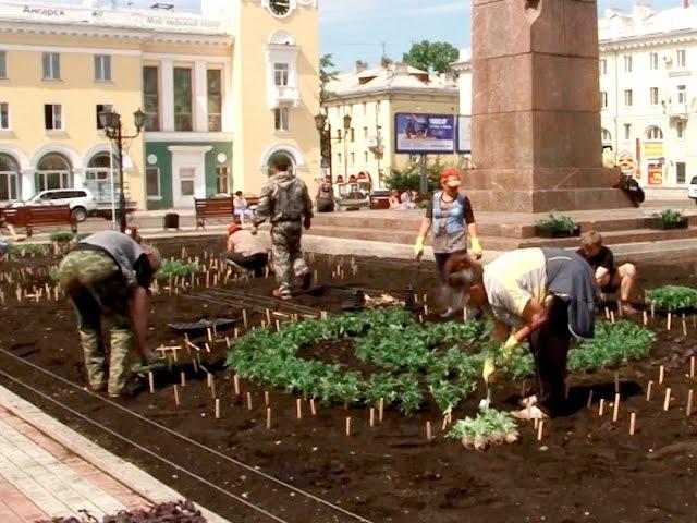 В Ангарске высаживают цветы