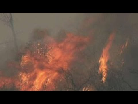 At least 21 dead in California wildfires