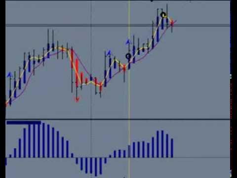 Migliori libri di forex trading